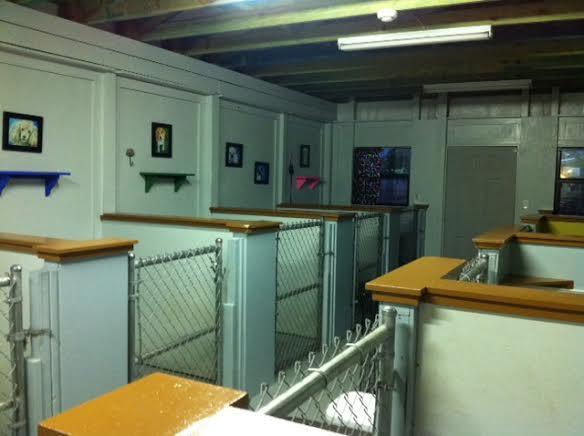 Kennel 1 salon de chien - Chien de salon photos ...
